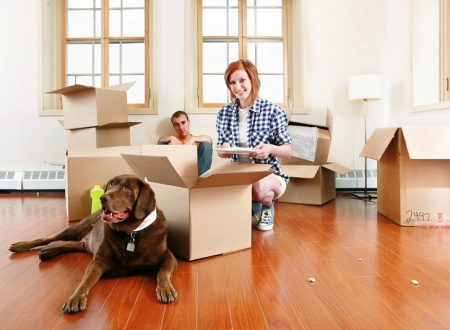 Guide to Having a Successful House Relocation (Pets Included)